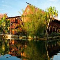 Favorite Resort: The Polynesian